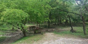 1445590261_yopal-parque-la-iguana-11