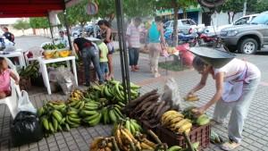 yopal_casanare_mercados_campesinos_11072013