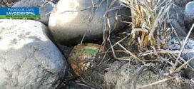 Ejército neutraliza acción terrorista en Saravena