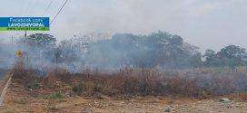 Recomendaciones para prevenir incendios forestales en temporada seca.